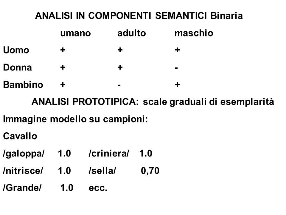ANALISI IN COMPONENTI SEMANTICI Binaria umanoadultomaschio Uomo+++ Donna++- Bambino +-+ ANALISI PROTOTIPICA: scale graduali di esemplarità Immagine mo