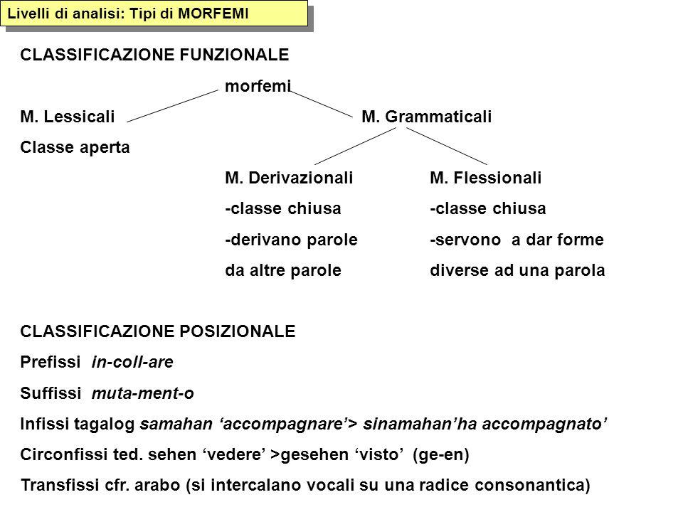 Livelli di analisi: Tipi di MORFEMI CLASSIFICAZIONE FUNZIONALE morfemi M. LessicaliM. Grammaticali Classe aperta M. Derivazionali M. Flessionali-class