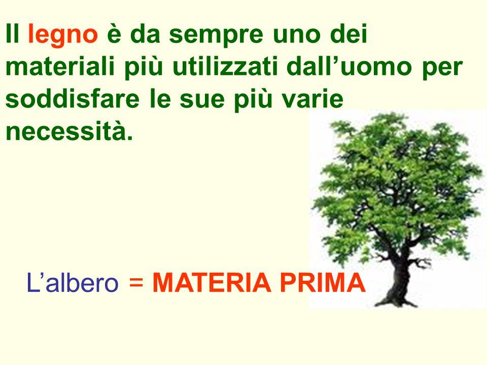 Il legno è da sempre uno dei materiali più utilizzati dall'uomo per soddisfare le sue più varie necessità. L'albero = MATERIA PRIMA