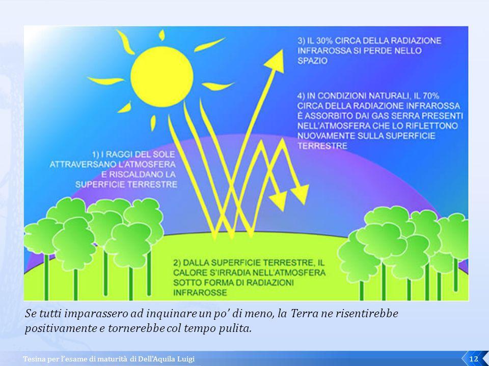 Tesina per l'esame di maturità di Dell Aquila Luigi11 Insomma, tutta la Terra è piagata da anomalie climatiche che nei prossimi anni, andando avanti di questo passo, potrebbero sconvolgere irrimediabilmente l'intero ecosistema.