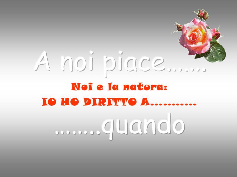 Noi e la natura: IO HO DIRITTO A…..……