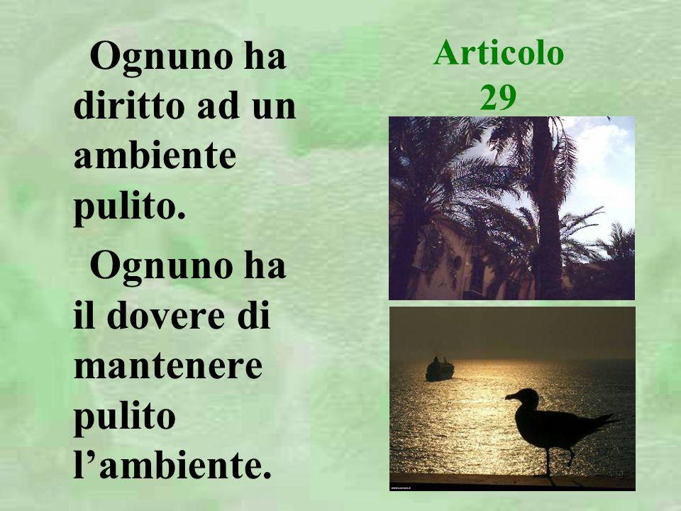 Articolo 29 Ognuno ha diritto ad un ambiente pulito.