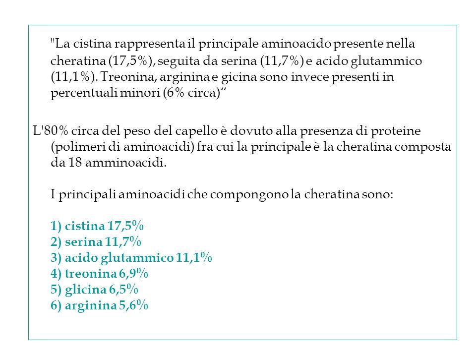 La cistina rappresenta il principale aminoacido presente nella cheratina (17,5%), seguita da serina (11,7%) e acido glutammico (11,1%).