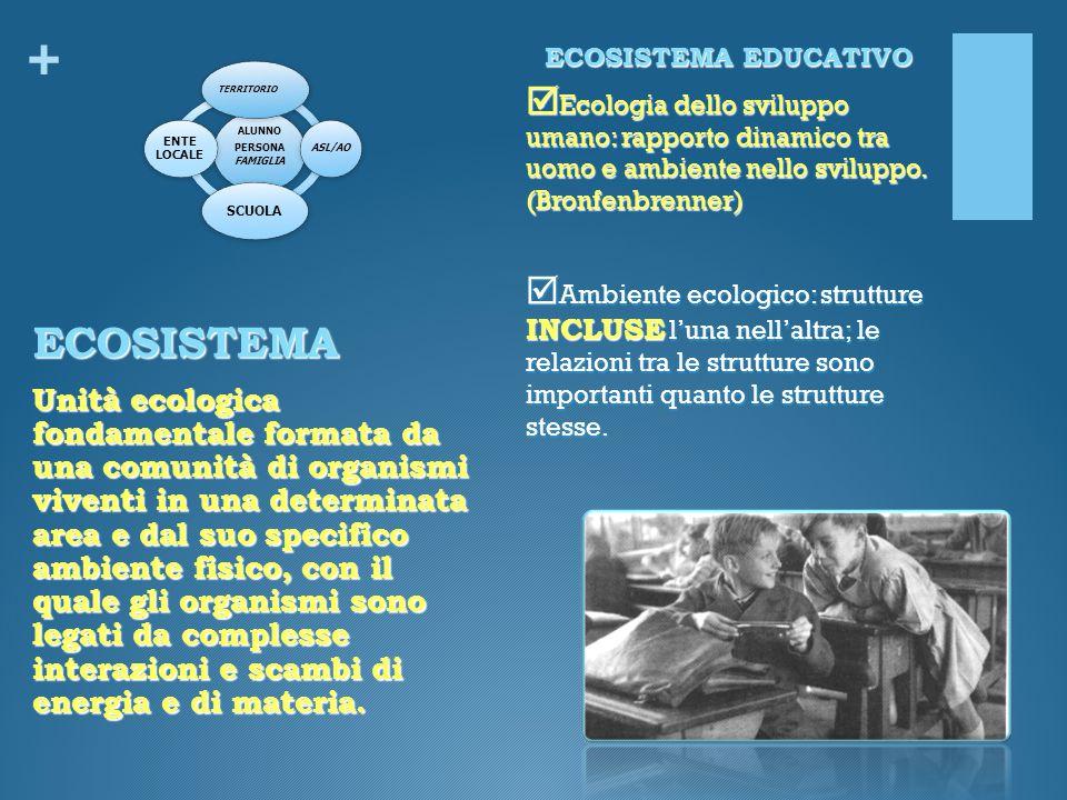 + ECOSISTEMA EDUCATIVO  Ecologia dello sviluppo umano: rapporto dinamico tra uomo e ambiente nello sviluppo. (Bronfenbrenner)  Ambiente ecologico: s