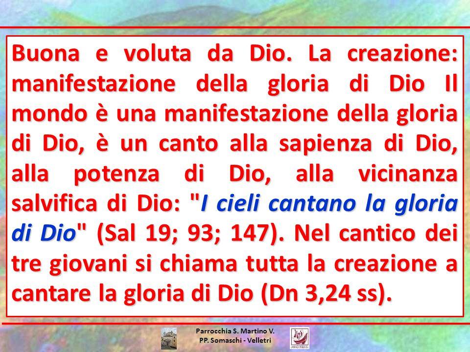 Parrocchia S. Martino V. PP. Somaschi - Velletri Buona e voluta da Dio.