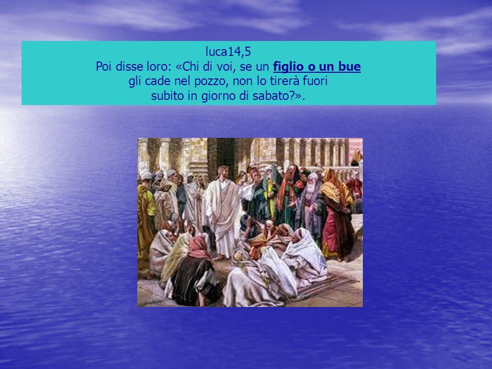 luca14,5 Poi disse loro: «Chi di voi, se un figlio o un bue gli cade nel pozzo, non lo tirerà fuori subito in giorno di sabato?».