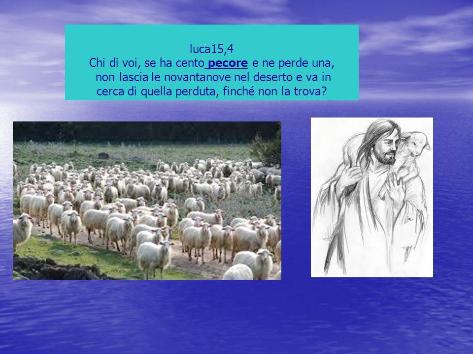 luca15,4 Chi di voi, se ha cento pecore e ne perde una, non lascia le novantanove nel deserto e va in cerca di quella perduta, finché non la trova?