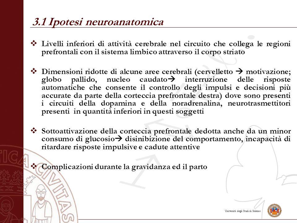 Università degli Studi di Salerno 3.1 Ipotesi neuroanatomica  Livelli inferiori di attività cerebrale nel circuito che collega le regioni prefrontali