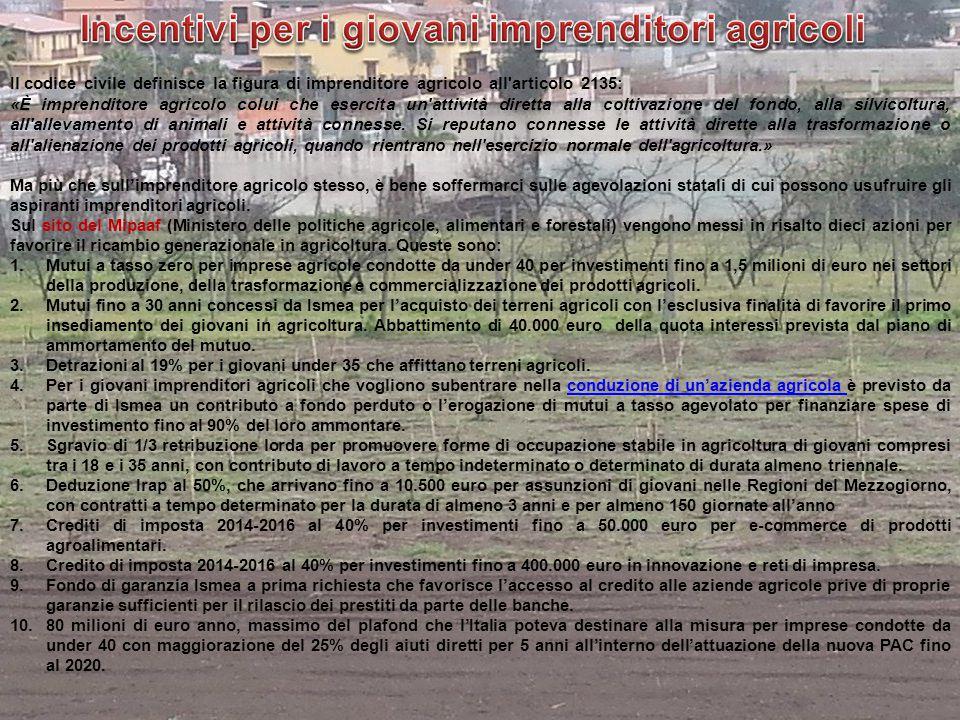 Il codice civile definisce la figura di imprenditore agricolo all'articolo 2135: «È imprenditore agricolo colui che esercita un'attività diretta alla