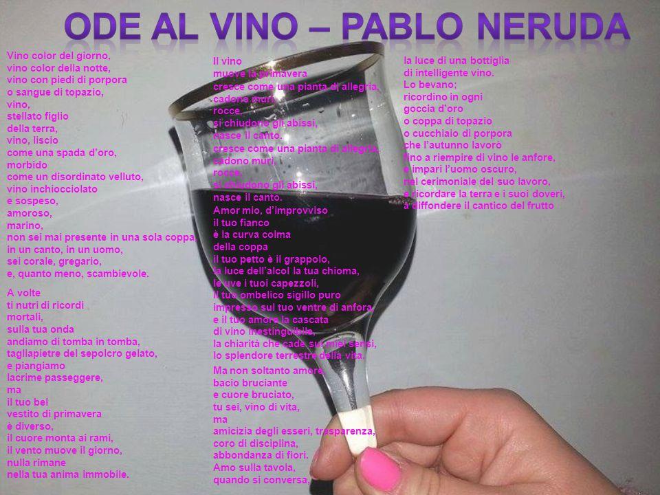 Vino color del giorno, vino color della notte, vino con piedi di porpora o sangue di topazio, vino, stellato figlio della terra, vino, liscio come una