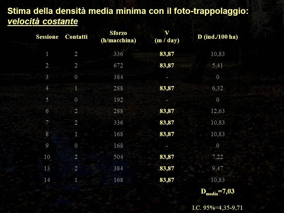 Stima della densità media minima con il foto-trappolaggio: velocità costante SessioneContatti Sforzo (h/macchina) V (m / day) D (ind./100 ha) 1233683,