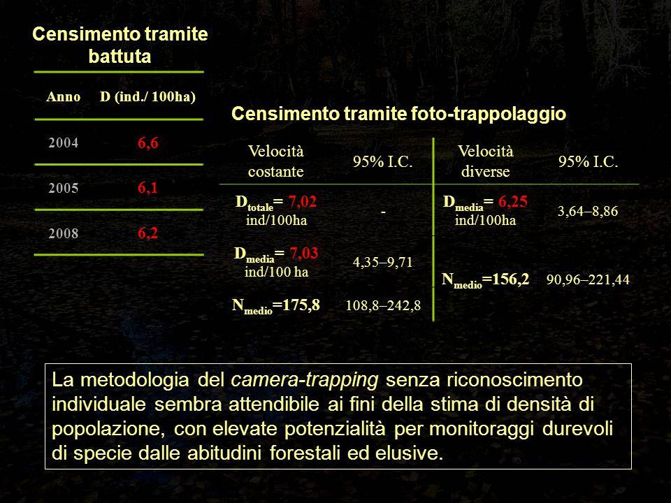 Censimento tramite battuta Censimento tramite foto-trappolaggio Velocità costante 95% I.C. Velocità diverse 95% I.C. D totale = 7,02 ind/100ha - D med