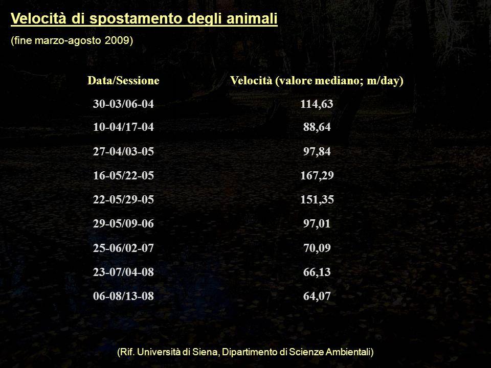 Velocità di spostamento degli animali (fine marzo-agosto 2009) Data/SessioneVelocità (valore mediano; m/day) 30-03/06-04114,63 10-04/17-0488,64 27-04/03-0597,84 16-05/22-05167,29 22-05/29-05151,35 29-05/09-0697,01 25-06/02-0770,09 23-07/04-0866,13 06-08/13-0864,07 (Rif.