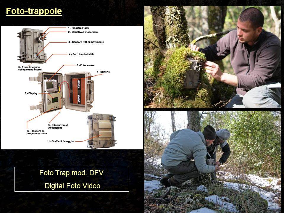 Foto-trappole Foto Trap mod. DFV Digital Foto Video