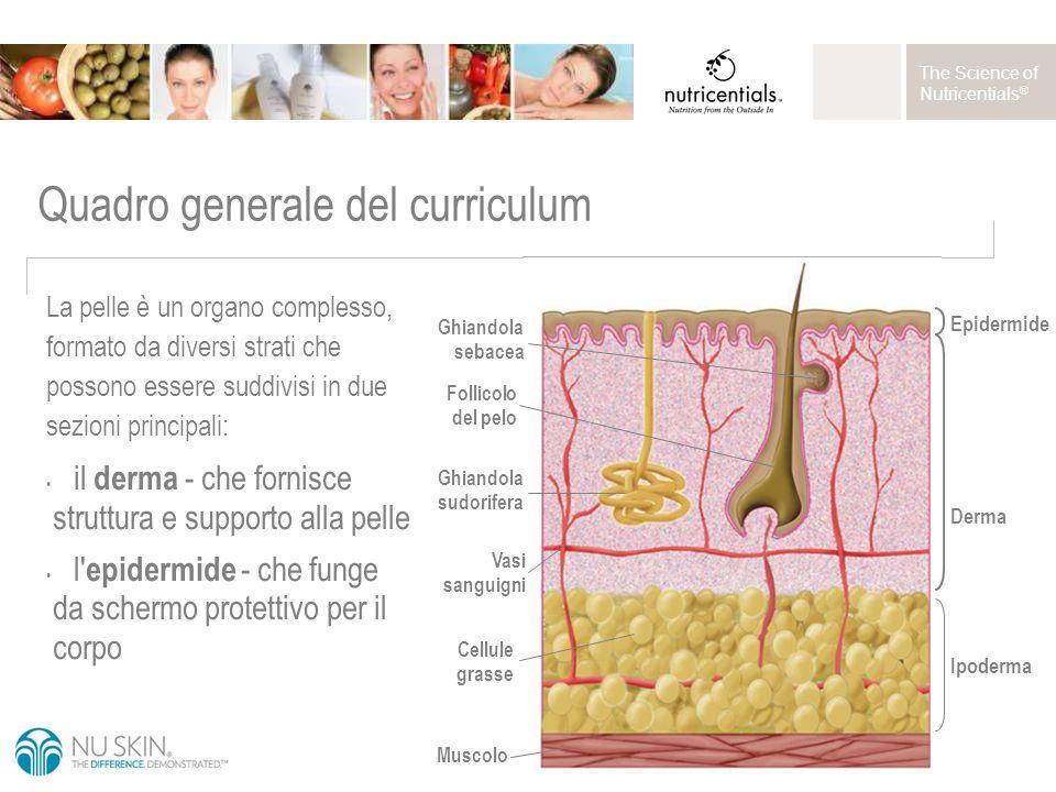 The Science of Nutricentials ® Applicare sul volto e sul collo con un batuffolo di cotone.
