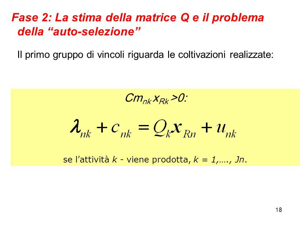 18 Fase 2: La stima della matrice Q e il problema della auto-selezione Il primo gruppo di vincoli riguarda le coltivazioni realizzate: Cm nk x Rk >0: se l'attività k - viene prodotta, k = 1,…., Jn.
