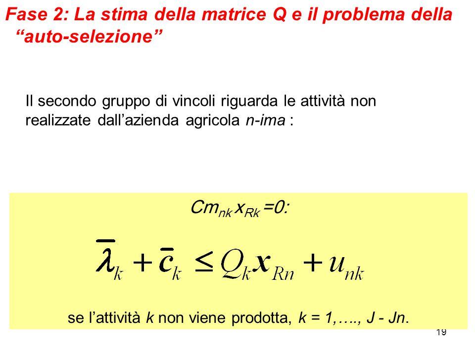 19 Fase 2: La stima della matrice Q e il problema della auto-selezione Il secondo gruppo di vincoli riguarda le attività non realizzate dall'azienda agricola n-ima : Cm nk x Rk =0: se l'attività k non viene prodotta, k = 1,…., J - Jn.