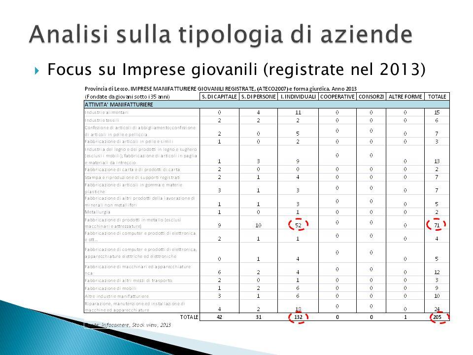 Focus su Imprese giovanili (registrate nel 2013)