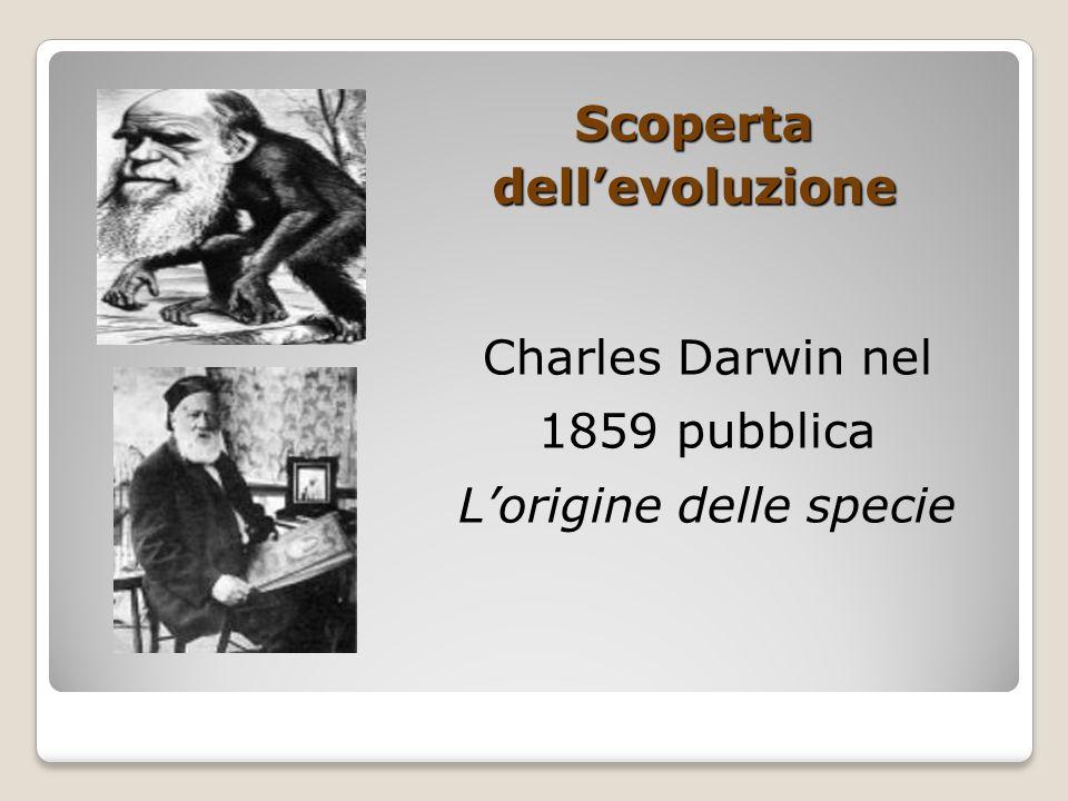 Scoperta dell'evoluzione Charles Darwin nel 1859 pubblica L'origine delle specie