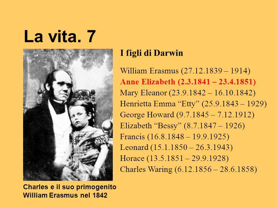 La vita. 7 Charles e il suo primogenito William Erasmus nel 1842 I figli di Darwin William Erasmus (27.12.1839 – 1914) Anne Elizabeth (2.3.1841 – 23.4