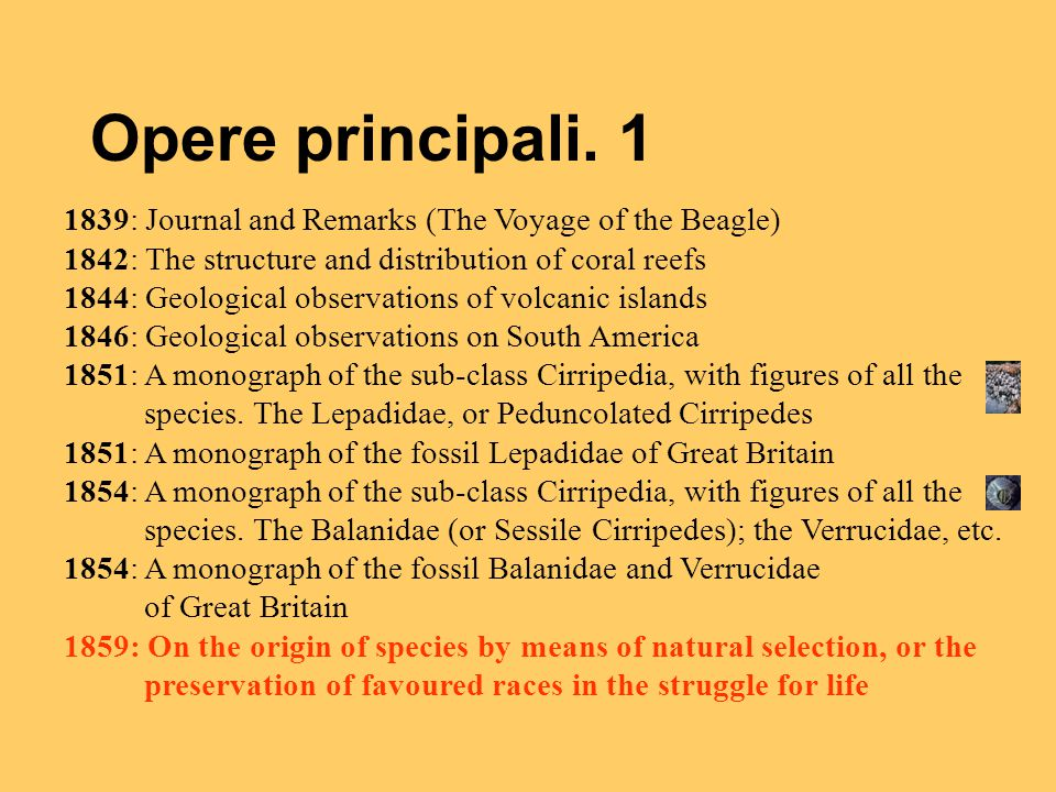 Opere principali. 1 1839: Journal and Remarks (The Voyage of the Beagle) 1842: The structure and distribution of coral reefs 1844: Geological observat