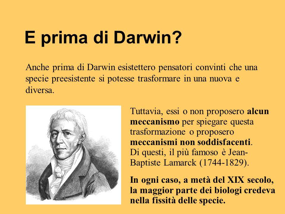 E prima di Darwin? Tuttavia, essi o non proposero alcun meccanismo per spiegare questa trasformazione o proposero meccanismi non soddisfacenti. Di que