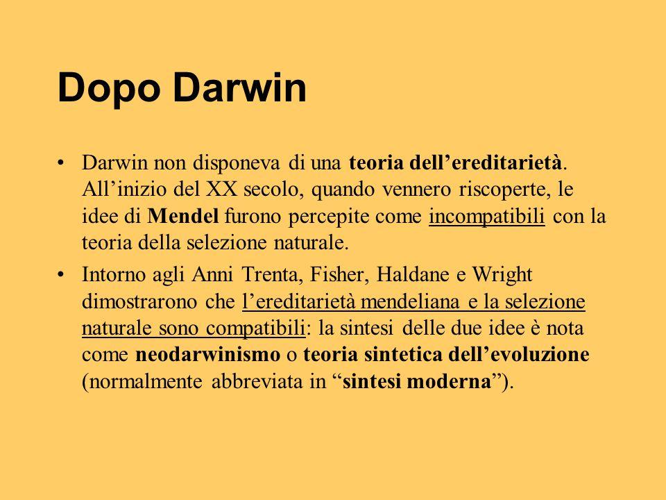 Dopo Darwin Darwin non disponeva di una teoria dell'ereditarietà. All'inizio del XX secolo, quando vennero riscoperte, le idee di Mendel furono percep