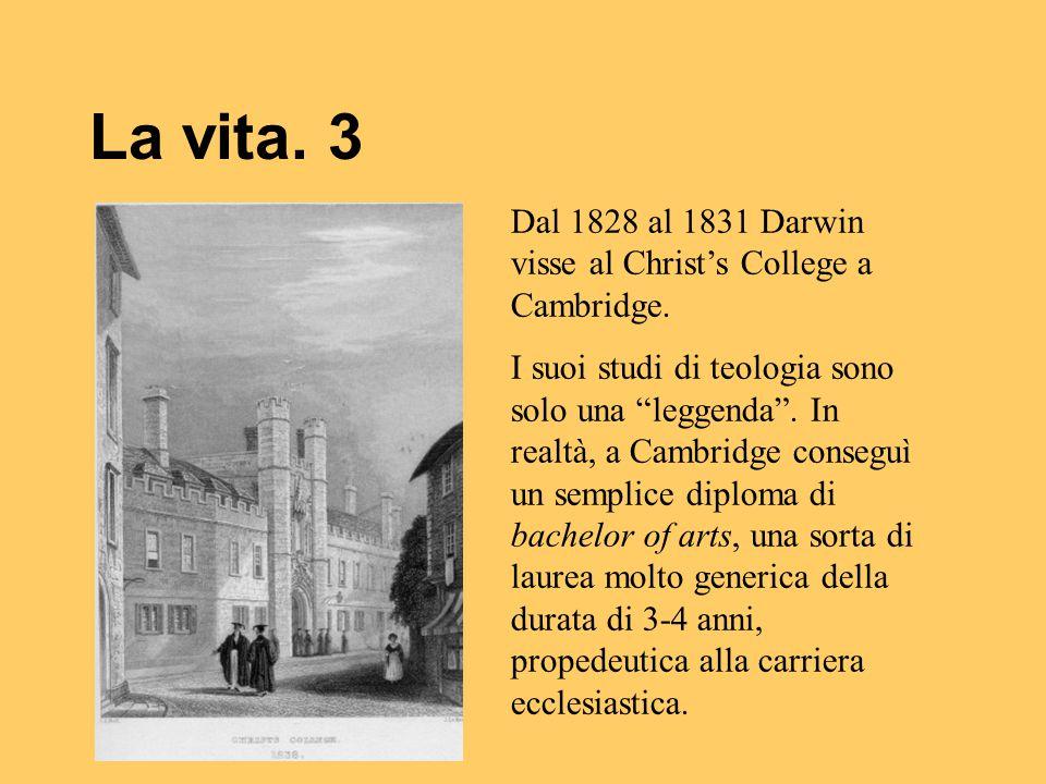 """La vita. 3 Dal 1828 al 1831 Darwin visse al Christ's College a Cambridge. I suoi studi di teologia sono solo una """"leggenda"""". In realtà, a Cambridge co"""