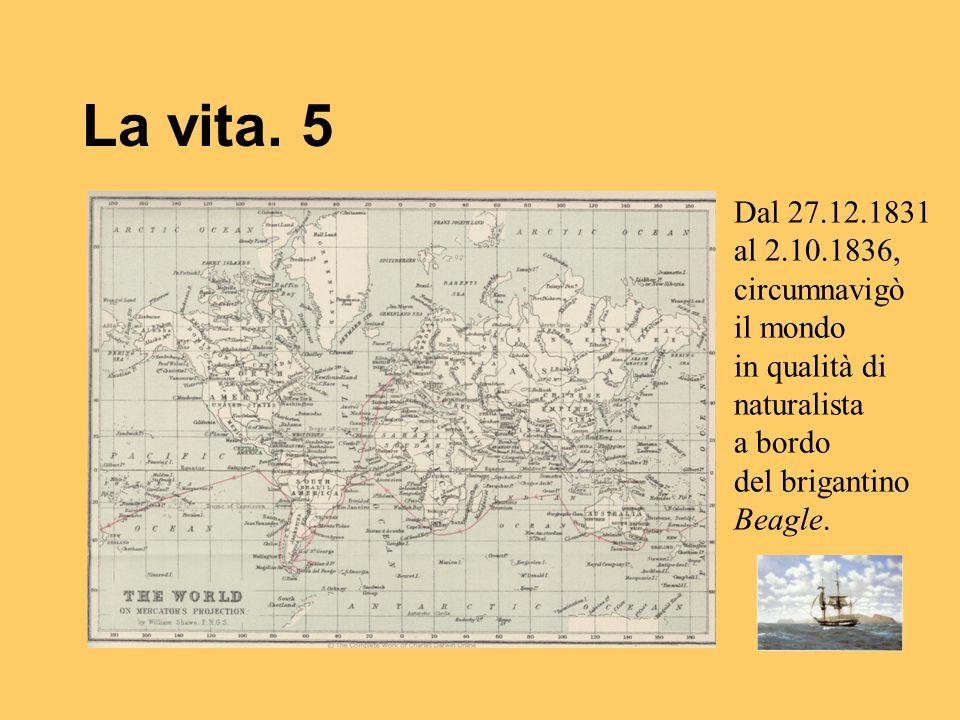La vita. 5 Dal 27.12.1831 al 2.10.1836, circumnavigò il mondo in qualità di naturalista a bordo del brigantino Beagle.