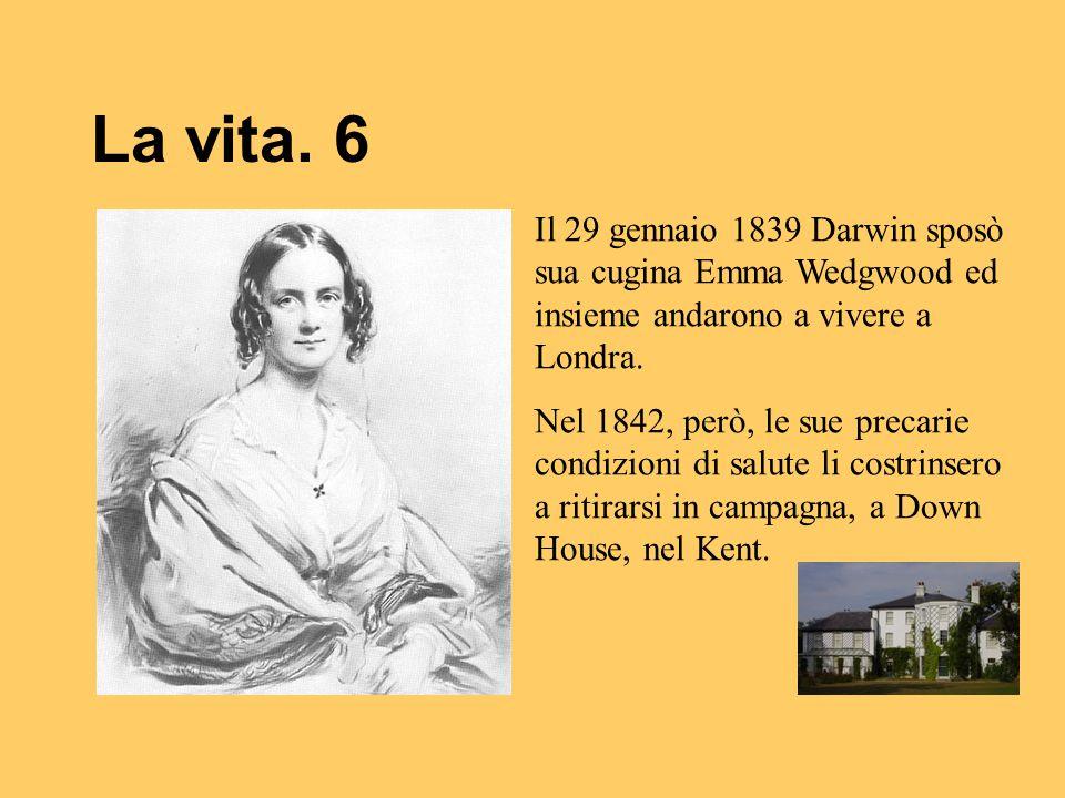 La vita. 6 Il 29 gennaio 1839 Darwin sposò sua cugina Emma Wedgwood ed insieme andarono a vivere a Londra. Nel 1842, però, le sue precarie condizioni