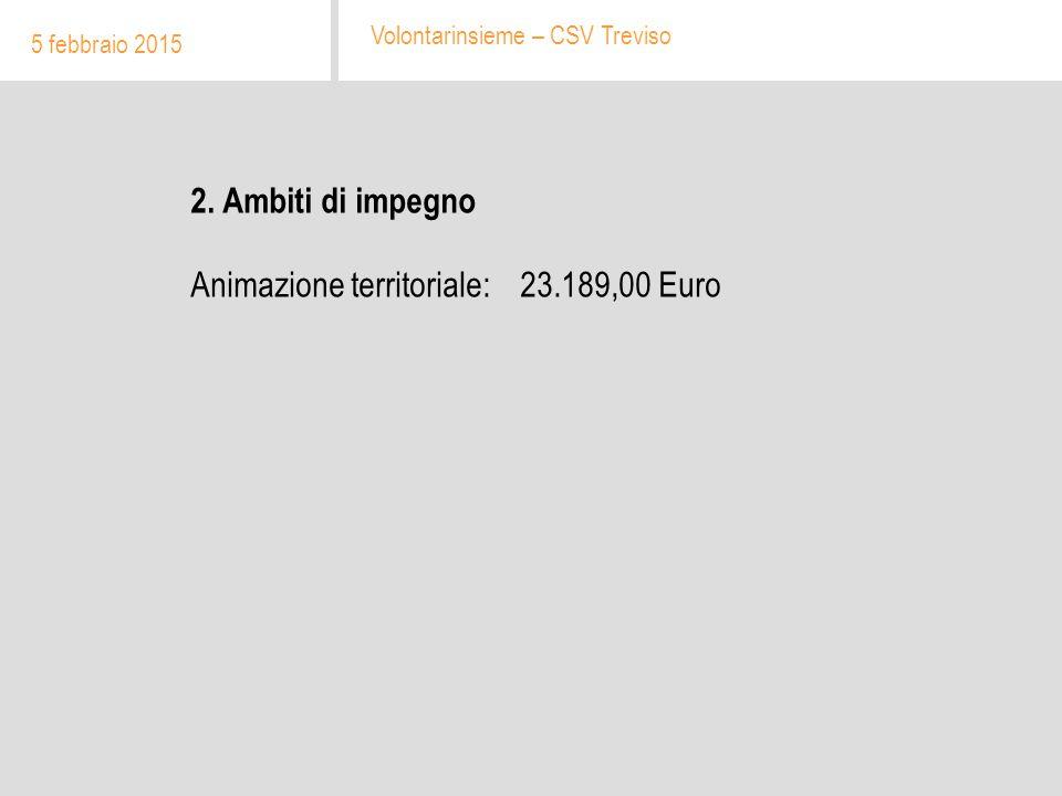 2. Ambiti di impegno Animazione territoriale: 23.189,00 Euro 5 febbraio 2015 Volontarinsieme – CSV Treviso
