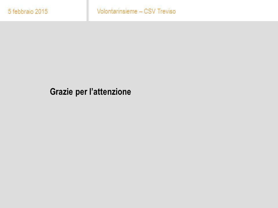 Grazie per l'attenzione 5 febbraio 2015 Volontarinsieme – CSV Treviso