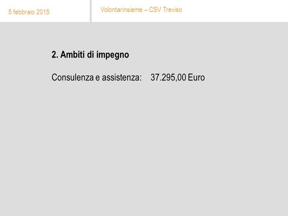2. Ambiti di impegno Consulenza e assistenza: 37.295,00 Euro 5 febbraio 2015 Volontarinsieme – CSV Treviso