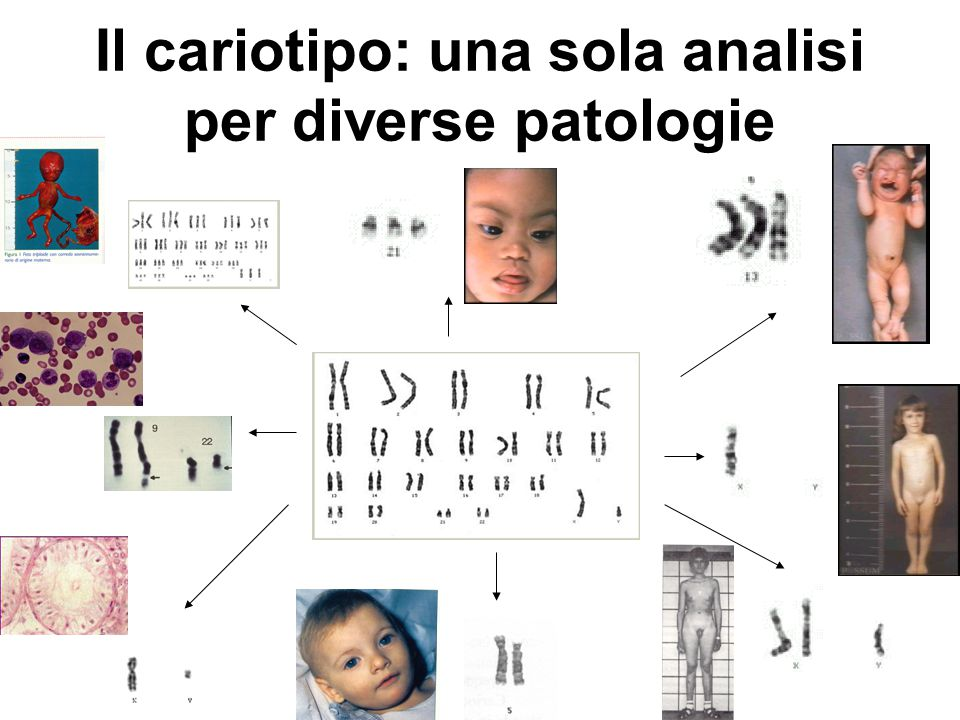 Analisi molecolare: una analisi specifica per ogni specifica patologia