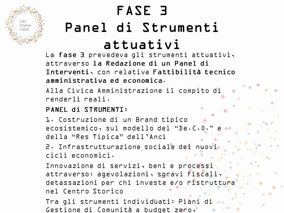 FASE 3 Panel di Strumenti attuativi La fase 3 prevedeva gli strumenti attuativi, attraverso la Redazione di un Panel di Interventi, con relativa Fatti
