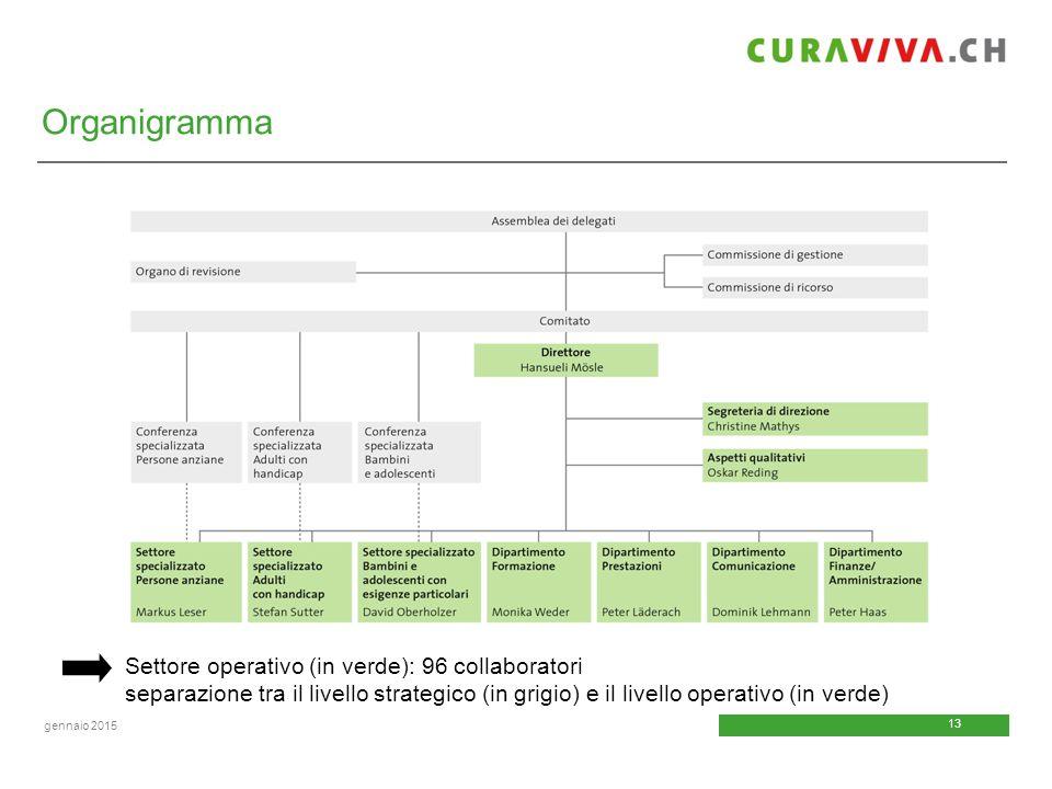 13 gennaio 2015 Organigramma Settore operativo (in verde): 96 collaboratori separazione tra il livello strategico (in grigio) e il livello operativo (