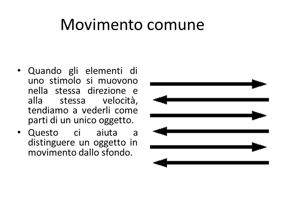 Movimento comune Quando gli elementi di uno stimolo si muovono nella stessa direzione e alla stessa velocità, tendiamo a vederli come parti di un unico oggetto.