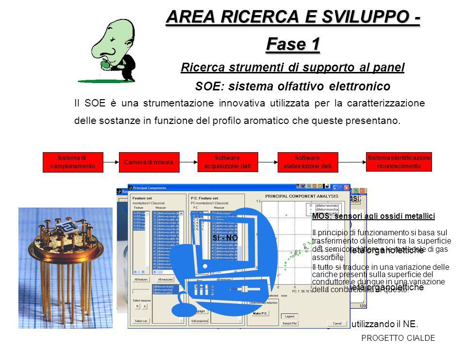 AREA RICERCA E SVILUPPO - Fase 1 AREA RICERCA E SVILUPPO - Fase 1 Ricerca strumenti di supporto al panel SOE: sistema olfattivo elettronico La pianifi