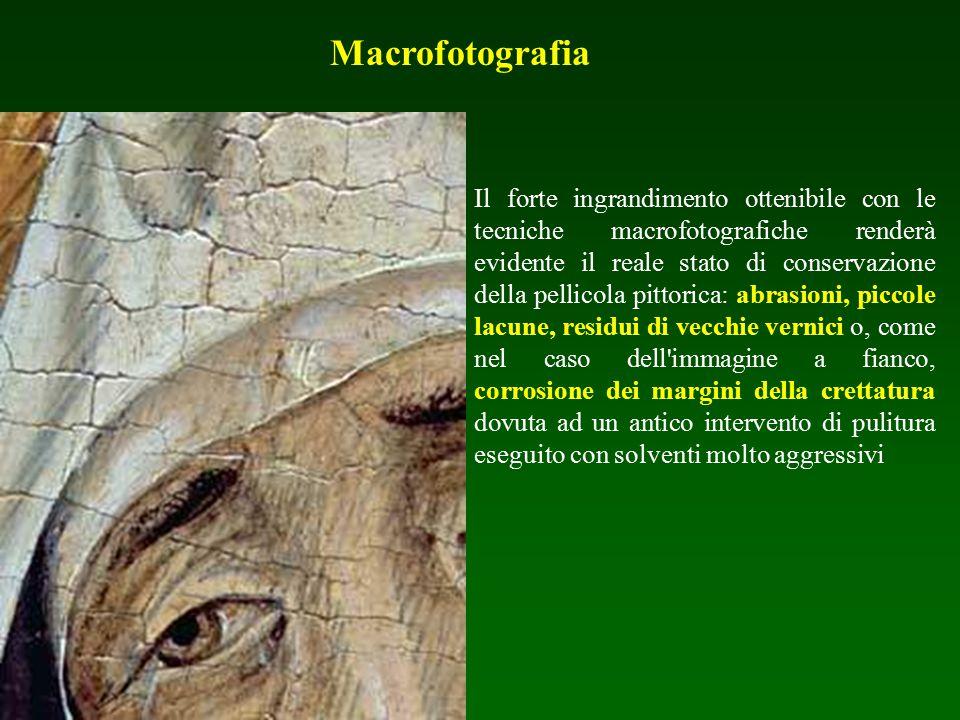 Macrofotografia Il forte ingrandimento ottenibile con le tecniche macrofotografiche renderà evidente il reale stato di conservazione della pellicola p