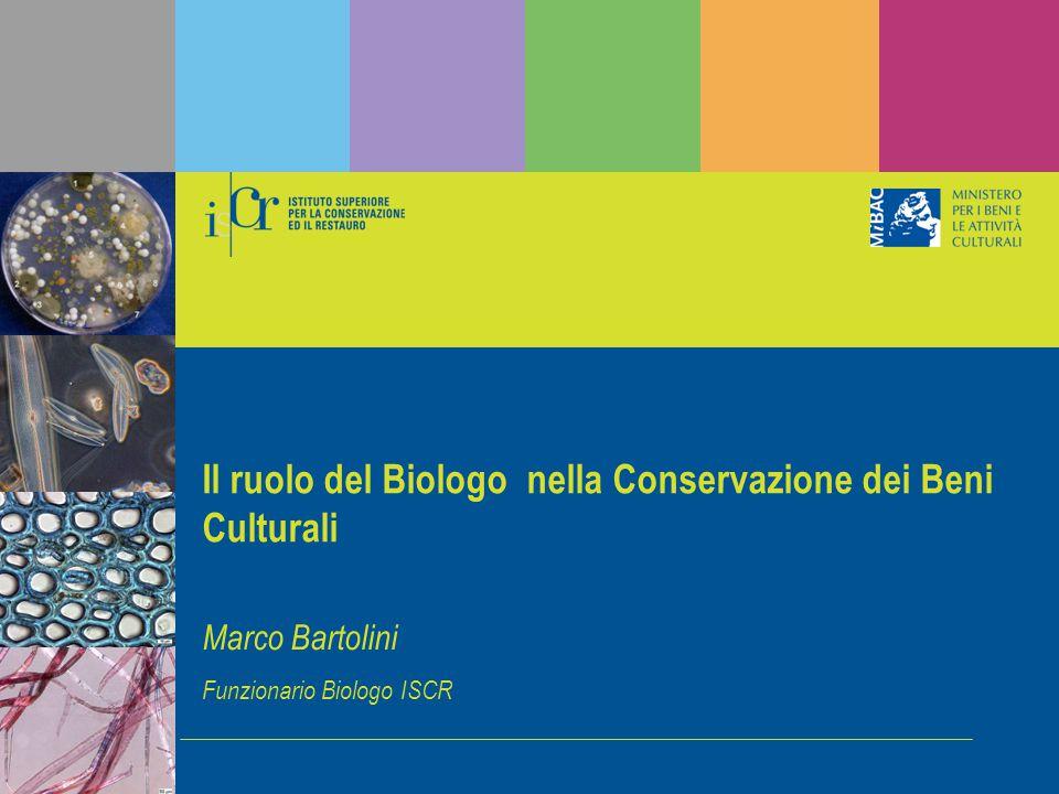 Ferrara 1 aprile 2011 Marco Bartolini Funzionario Biologo ISCR Il ruolo del Biologo nella Conservazione dei Beni Culturali