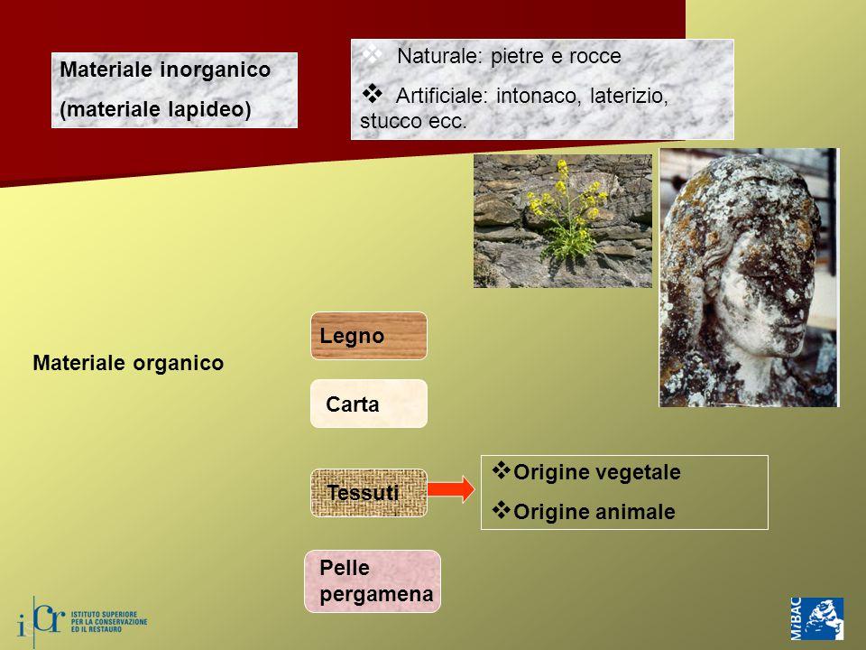 Materiale inorganico (materiale lapideo)  Naturale: pietre e rocce  Artificiale: intonaco, laterizio, stucco ecc. Materiale organico Legno Carta Tes