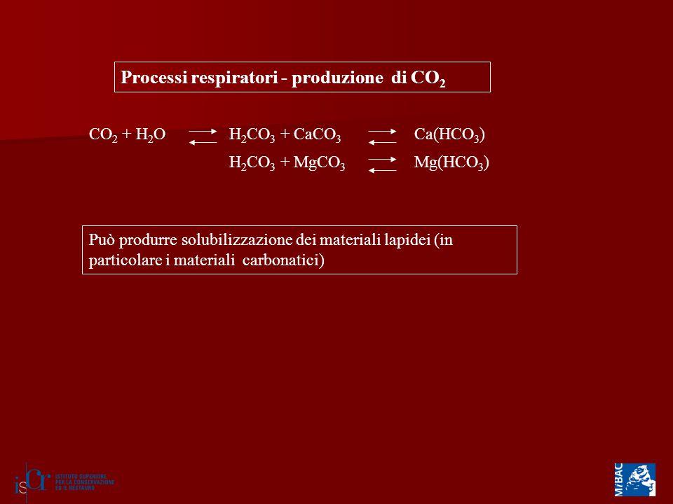 Processi respiratori - produzione di CO 2 CO 2 + H 2 OH 2 CO 3 + CaCO 3 Ca(HCO 3 ) H 2 CO 3 + MgCO 3 Mg(HCO 3 ) Può produrre solubilizzazione dei materiali lapidei (in particolare i materiali carbonatici)
