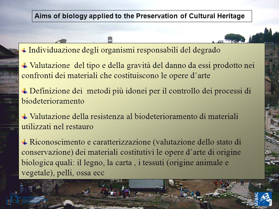 Aims of biology applied to the Preservation of Cultural Heritage Individuazione degli organismi responsabili del degrado Valutazione del tipo e della