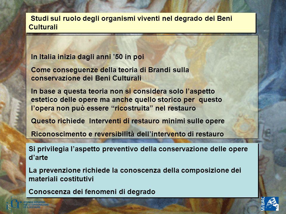 Studi sul ruolo degli organismi viventi nel degrado dei Beni Culturali In Italia inizia dagli anni '50 in poi Come conseguenze della teoria di Brandi