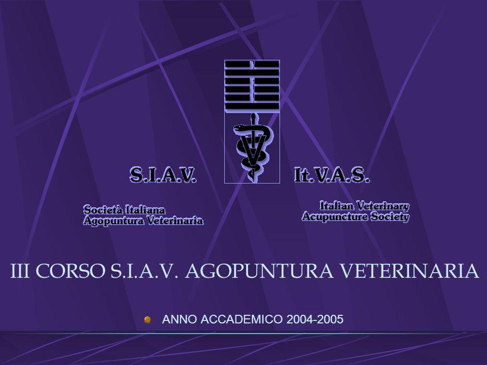 METALLO CASO CLINICO BILLY Descrizione Storia clinica Patologia in atto Terapia Risultati
