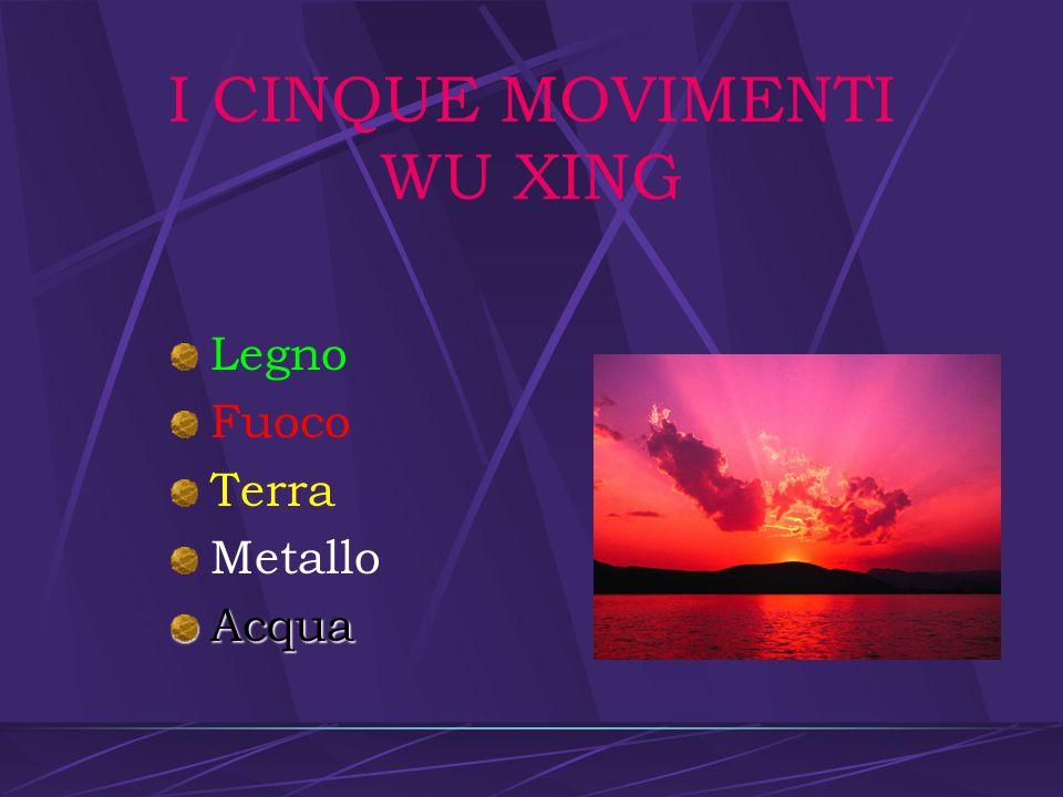 I CINQUE MOVIMENTI WU XING Ogni cosa può essere ascritta ai cinque movimenti Le associazioni vengono fatte per analogia