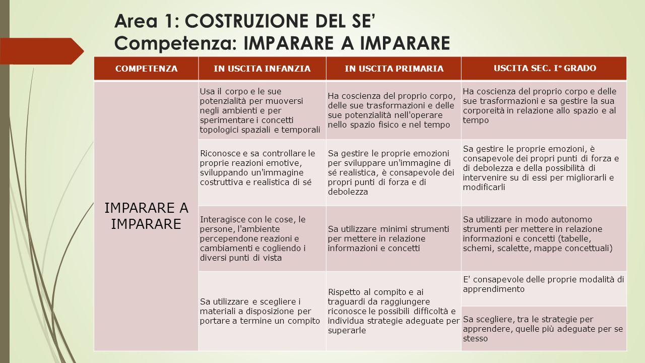 Area 1: COSTRUZIONE DEL SE' Competenza: IMPARARE A IMPARARE COMPETENZAIN USCITA INFANZIAIN USCITA PRIMARIA USCITA SEC.