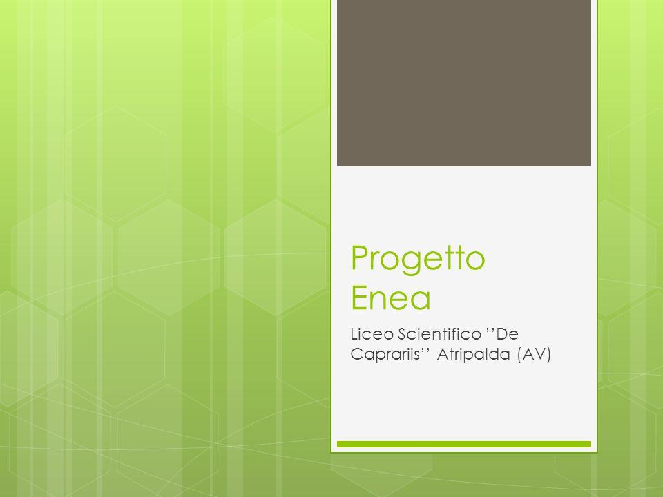 Introduzione  Il progetto Enea mira a sensibilizzare le entità pubbliche e le rispettive istituzioni territoriali a un modello di vita più sano ed ecologico, a impatto zero sull'ambiente e con pochissimi rischi sulla salute dell'uomo.