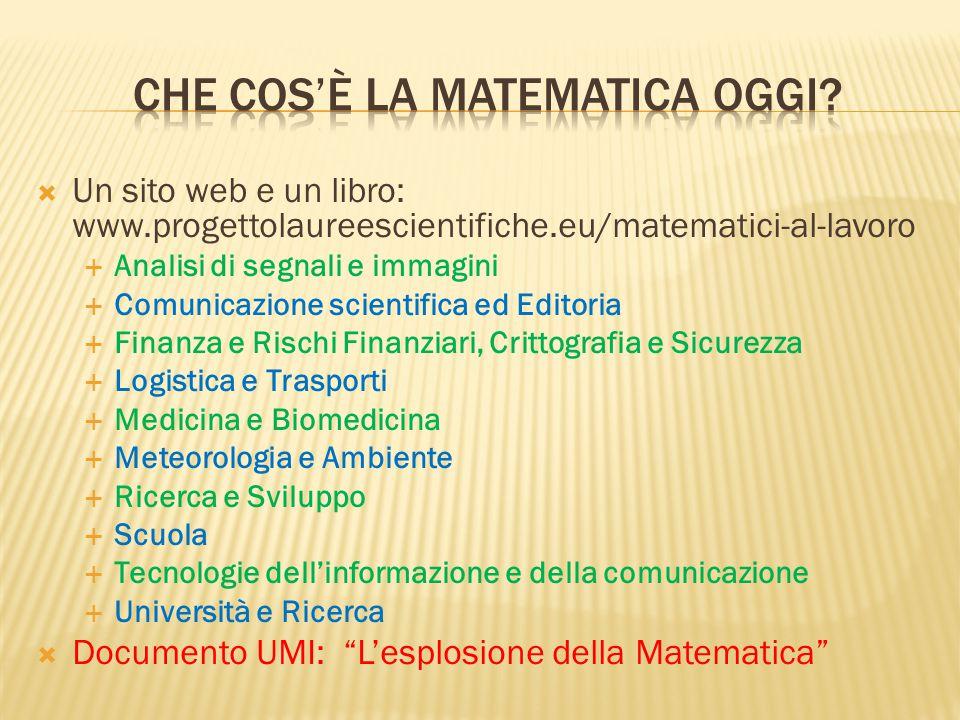  Un sito web e un libro: www.progettolaureescientifiche.eu/matematici-al-lavoro  Analisi di segnali e immagini  Comunicazione scientifica ed Editor