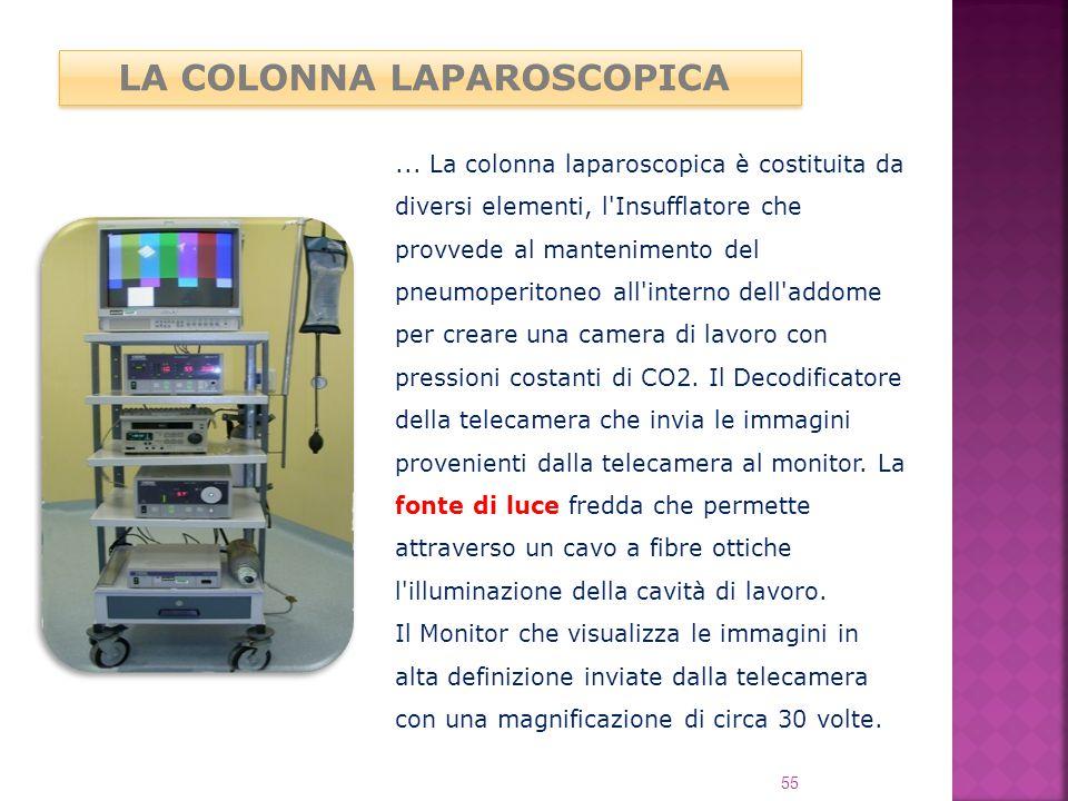 LA COLONNA LAPAROSCOPICA... La colonna laparoscopica è costituita da diversi elementi, l'Insufflatore che provvede al mantenimento del pneumoperitoneo